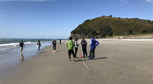 Coastal processes data collection. Geography field trip with Learning Journeys, New Zealand