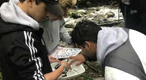 Earth Science and Living World. Students collecting data from river during field trip.