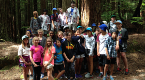 Games/activities (juniors) to improve knowledge of New Zealand forest species and their relationships
