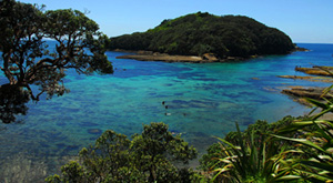 Biodiversity school trip for secondary and tertiary students. Goat Island Marine Reserve_New Zealand