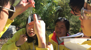 Students sample testing during geothermal chemistry field trip with Learning Journeys, New Zealand.